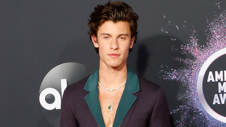 Shawn Mendes Teases Fans With Shirtless Selfies, New Music