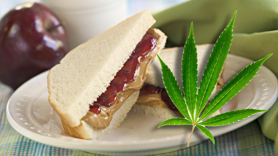 Student Found With THC-Infused Sandwich At South Carolina School