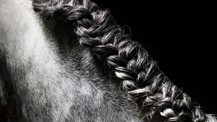 Texas School Faces Lawsuit After Suspending Student For Wearing Braids
