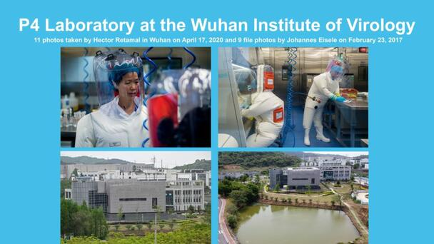 More scientists calling for investigation into Wuhan lab