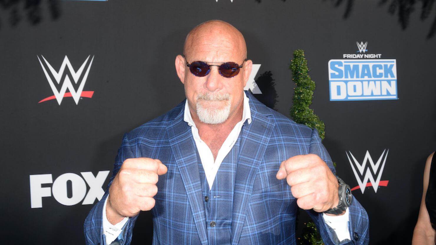 WWE 20th Anniversary Celebration Marking Premiere Of WWE Friday Night SmackDown On FOX