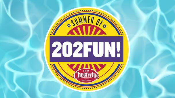 The Summer of 202FUN!
