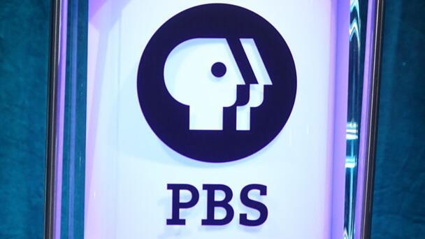 PBS Cancels 'Arthur' After A 25-Season Run