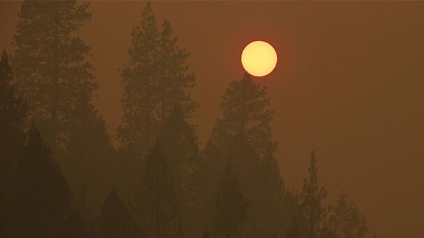 Outdoor Activities In Sacramento Canceled Due To Unhealthy Air Quality