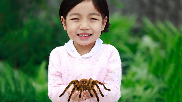 WATCH: Dad Panics When 'Bug' Daughter Is Playing With Is A Giant Tarantula