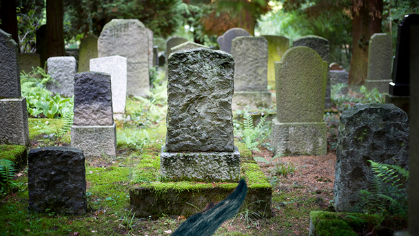 Man Disturbed To See Hair Coming Out Of 100-Year-Old Grave
