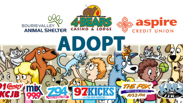 Find your next best friend at Minot's Souris Valley Animal Shelter!
