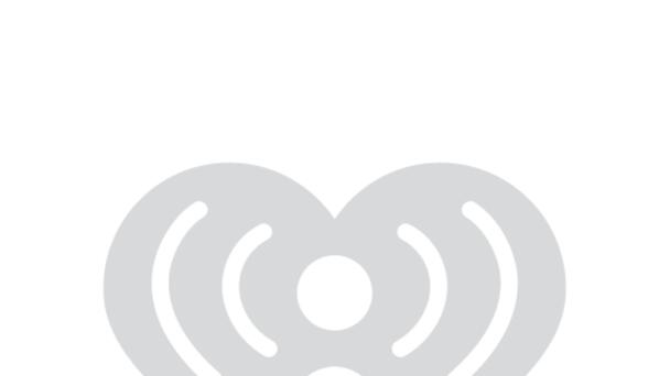 TUCKER is our Pet of the Week!