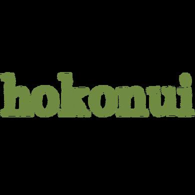 Hokonui Ashburton logo