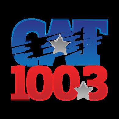 100.3 The Cat logo