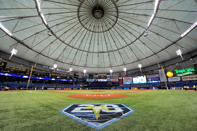 Rays - The Trop 20th Anniversary