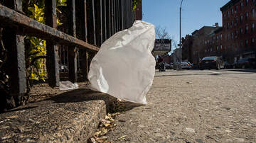 Local News - Boston Plastic Bag Ban Begins Today