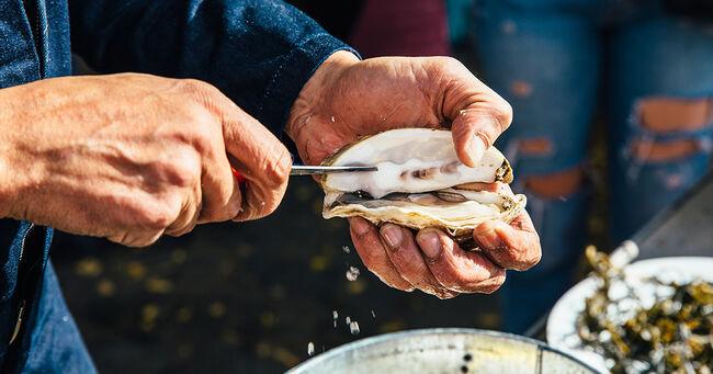 Man Shucks Oyster Generic Getty Image
