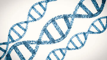 Business - Boston Company Aims To Use DNA To Store Data