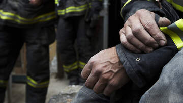 Florida News - Dogs Perish In Orange County House Fire