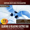 Calming and Relaxing Electric Fan