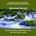 Relaxing Stream, Part 1