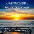 Relaxing Ocean Waves: Point Reyes, California