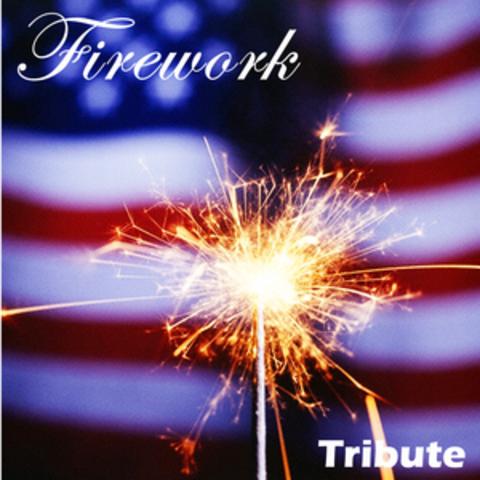 Firework Masters