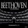 Symphony N. 3: Scherzo. Allegro Vivace (Beethoven) - Camerata Cassoviae|Walter Attanasi