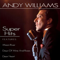 Can't Get Used To Losing You - Andy Williams