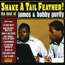 I'm Your Puppet - James & Bobby Purify