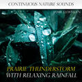 Sounds of Nature: Prairie Thunderstorm with Relaxing Rainfall [Bonus Track]
