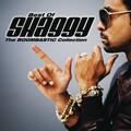 Shaggy & Rayvon