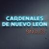 Soy Lo Peor - Los Cardenales de Nuevo Leon