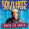 Me Quieres Tu Y Te Quiero Yo - David Lee Garza