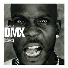Party Up - DMX