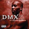 How's It Goin' Down - DMX
