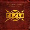 Modern Day Cowboy - Tesla