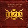 Signs - Tesla