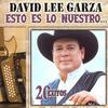Te Quiero, Te Amo - David Lee Garza