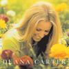 We Danced Anyway - Deana Carter
