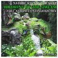 Natural Sounds: Exotic Jungle