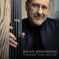 Thicker Than Water - Brian Bromberg