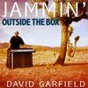 Jamming (Bonus Radio Version) - David Garfield