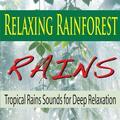 Tropical Rain Sounds Along the Amazon
