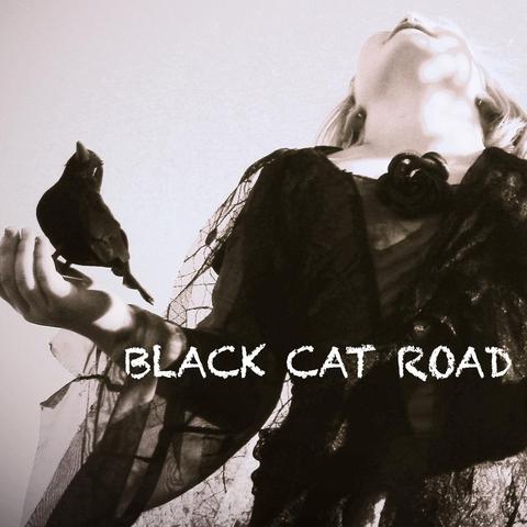 Black Cat Road