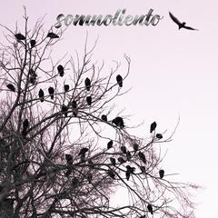 Listen Free to Lyor - Somnoliento (feat  Smpl & Giova) Radio