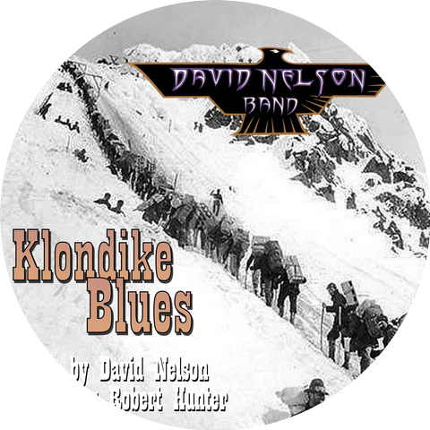 David Nelson Band