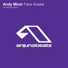 Fake Awake - Andy Moor