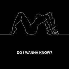Do I Wanna Know? - Arctic Monkeys