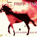 Robert Fripp and Brian Eno