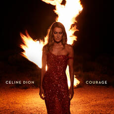 Imperfections - Celine Dion