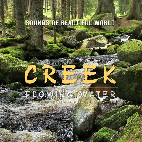 Sounds of Beautiful World