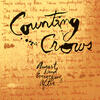 Anna Begins - Counting Crows