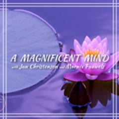A Magnificent Mind